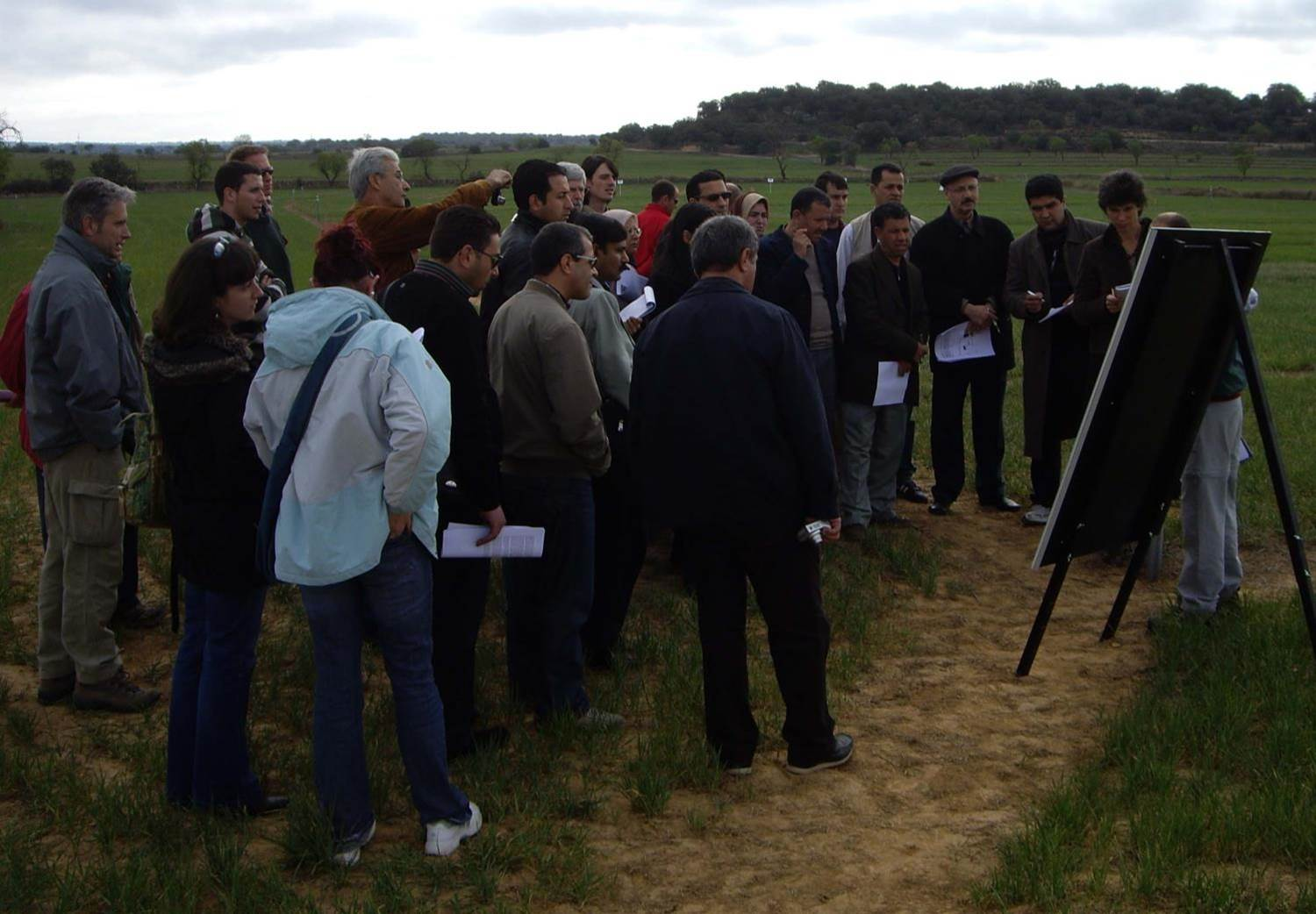 Participants gather in the field for viewing conservation agriculture on a nearby farm
