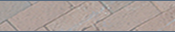NCSU Home Page